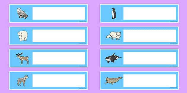 Polar Animals Gratnells Tray Labels - polar, animals, labels