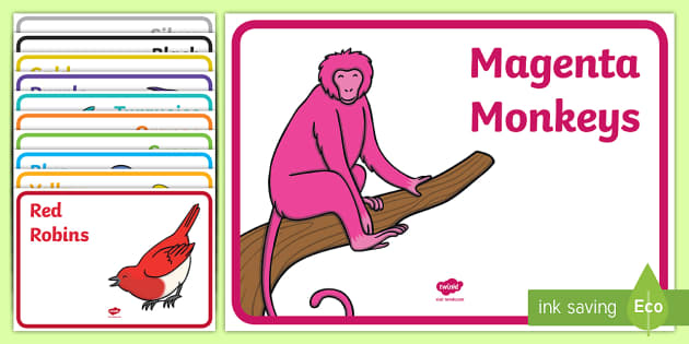 Coloured Animal Reading Group Display Labels - New Zealand Class Management, reading, groups, class, organisation, new year, new term, new zealand,