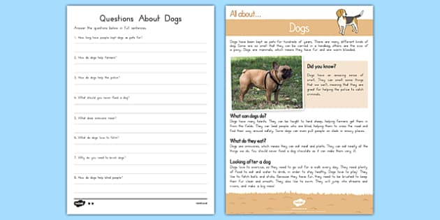 Dogs Reading Comprehension - usa, america, Reading comprehension, dog, find, locate, read, comprehend, fact, title, fact file, information, question