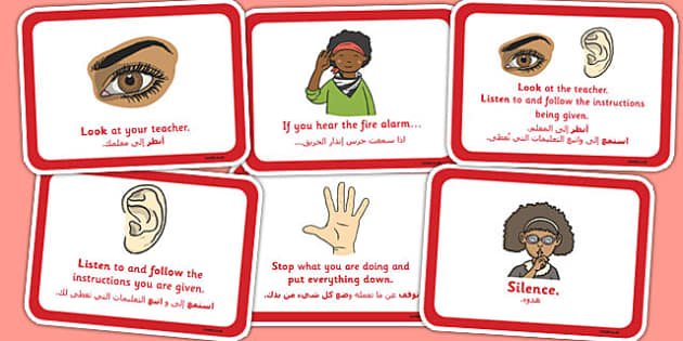 Fire Alarm Instructions Cards Sentences Arabic Translation - arabic