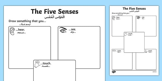 The Five Senses Drawing Activity Sheet - Arabic Translation, worksheet