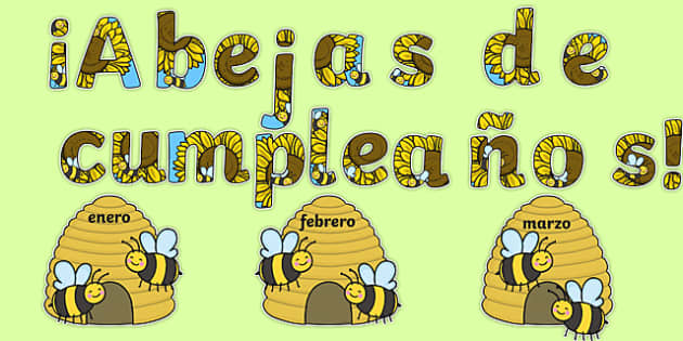 Birthday Bees Display Pack Spanish-Spanish