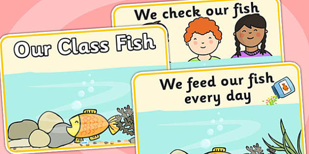 Our Class Fish Display Posters No Tank - our class fish, display posters, posters, posters for display, classroom display, information posters, class pet