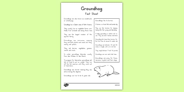 Groundhog Fact Sheet - groundhog day worksheet, groundhog, tradition, celebration, fact sheet