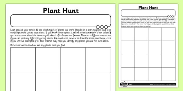 Plant Hunt Activity Sheet - plant, growth, local area, hunt, activity, sheet, worksheet