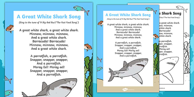A Great White Shark Song