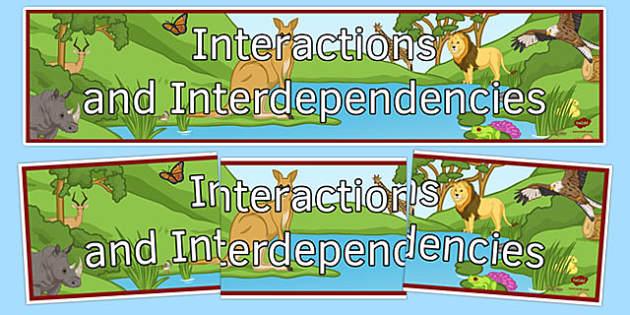 Interactions and Interdependencies Display Banner - interactions and interdependencies, ks3, biology, display banner