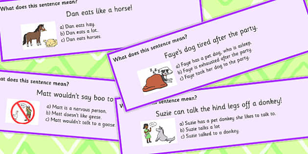 Animal Idioms Sentences Multiple Choice Set 3 - animal, idioms