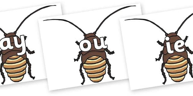 Phase 5 Phonemes on Cockroach - Phonemes, phoneme, Phase 5, Phase five, Foundation, Literacy, Letters and Sounds, DfES, display