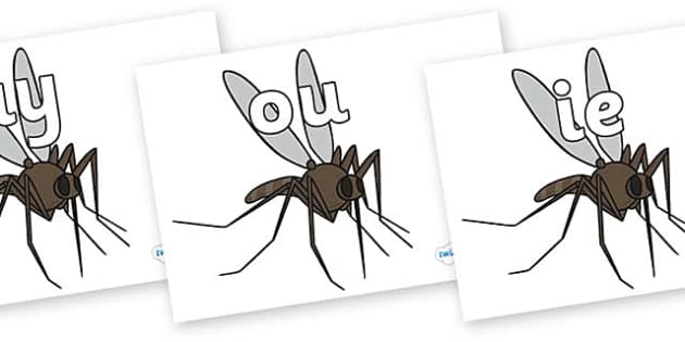 Phase 5 Phonemes on Mosquitos - Phonemes, phoneme, Phase 5, Phase five, Foundation, Literacy, Letters and Sounds, DfES, display