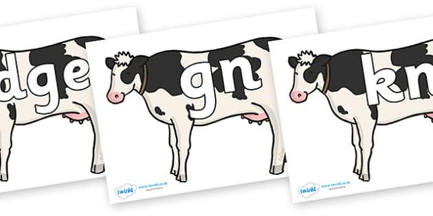 Silent Letters on Cows - Silent Letters, silent letter, letter blend, consonant, consonants, digraph, trigraph, A-Z letters, literacy, alphabet, letters, alternative sounds