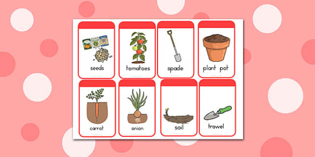 Grow your Own Vegetables Flashcards - australia, vegetables