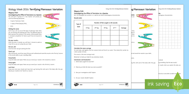 Terrifying Pterosaur Variation Activity Sheets - Biology Week, variation, genetic, characteristics, advantages, genes, gene, competition, species, na