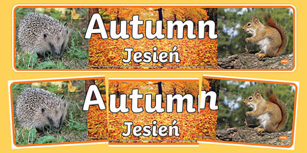 Autumn Photo Display Banner Polish Translation-Polish-translation