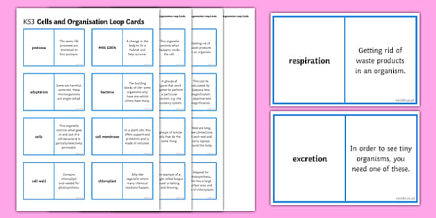 Cells and Organisation Loop Cards