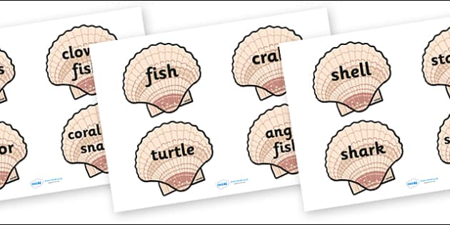 Under the Sea Word Cards (on shells) - Shell, Shells, Word Card, Under the sea, sea, seaside, topic, water, tide, fish, sea creatures, shark, whale, marine, dolphin, starfish, waves, sand