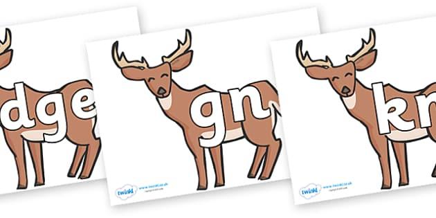 Silent Letters on Deer - Silent Letters, silent letter, letter blend, consonant, consonants, digraph, trigraph, A-Z letters, literacy, alphabet, letters, alternative sounds