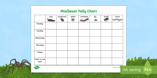 Minibeast Tally Chart Activity Sheet - World Around Us Resources, worksheet