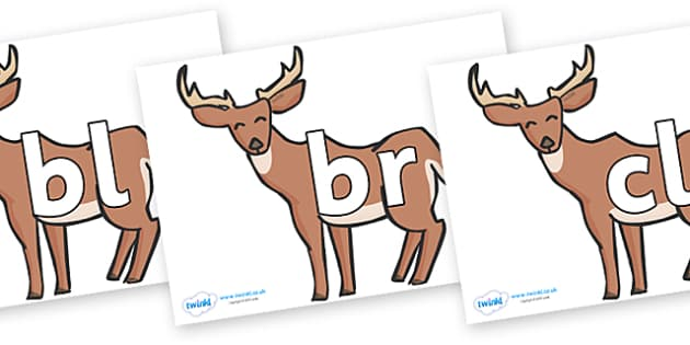 Initial Letter Blends on Deer - Initial Letters, initial letter, letter blend, letter blends, consonant, consonants, digraph, trigraph, literacy, alphabet, letters, foundation stage literacy