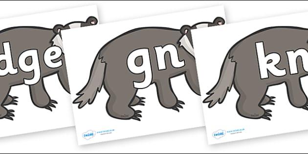 Silent Letters on Badgers - Silent Letters, silent letter, letter blend, consonant, consonants, digraph, trigraph, A-Z letters, literacy, alphabet, letters, alternative sounds