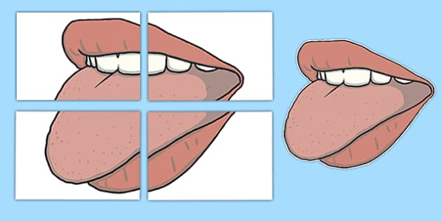 Mouth Display Cut-Outs