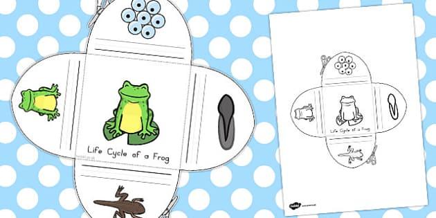Frog Life Cycle Interactive Visual Aid - australia, life cycle