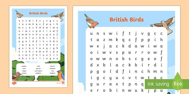 KS1 British Birds Word Search - KS1 , RSPB, school, bird, bird watch, bird names, bird wordsearch, British birds.