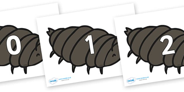 Numbers 0-100 on Woodlice - 0-100, foundation stage numeracy, Number recognition, Number flashcards, counting, number frieze, Display numbers, number posters