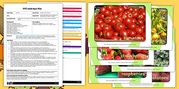 Harvest Food Printing EYFS Adult Input Plan and Resource Pack - harvest