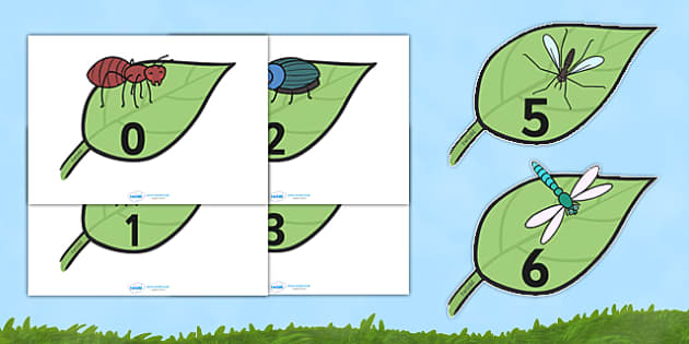 Numbers 0-20 on Minibeasts - Foundation Numeracy, Number recognition, Number flashcards