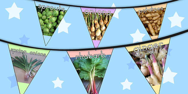 Grow Your Own Display Photo Bunting - photos, displays, flags