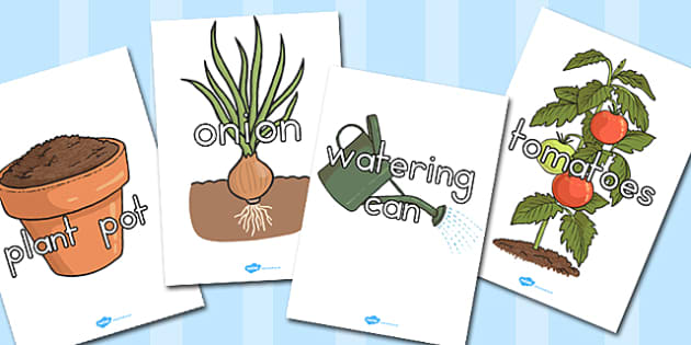 Grow Your Own Vegetables Topic Words on Topic Images - growing