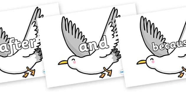 Connectives on Seagulls - Connectives, VCOP, connective resources, connectives display words, connective displays