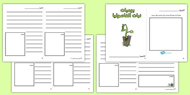 إطار كتابة يوميات نبات الفاصوليا - نباتات، موارد، أوراق عمل، عربي
