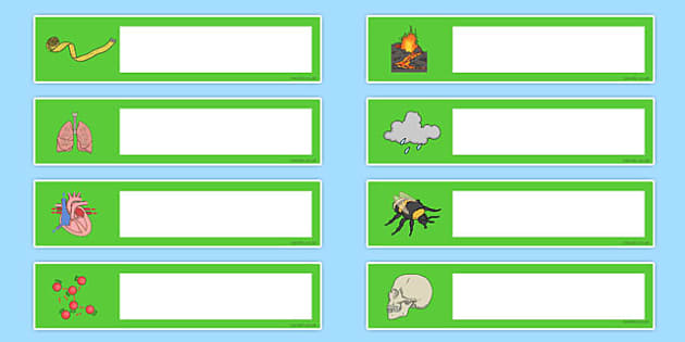 Science Themed Editable Gratnells Tray Labels - tray labels
