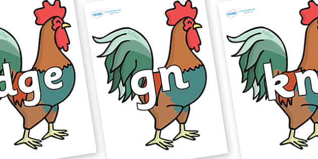 Silent Letters on Rooster - Silent Letters, silent letter, letter blend, consonant, consonants, digraph, trigraph, A-Z letters, literacy, alphabet, letters, alternative sounds