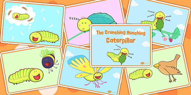 Story Sequencing Cards to Support Teaching on The Crunching Munching Caterpillar - story