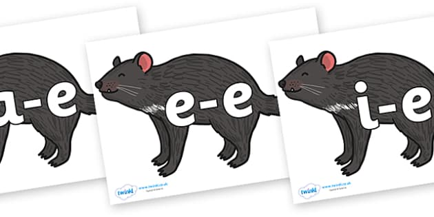 Modifying E Letters on Tasmanian Devil - Modifying E, letters, modify, Phase 5, Phase five, alternative spellings for phonemes, DfES letters and Sounds