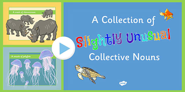 A Collection of Slightly Unusual Collective Nouns PowerPoint