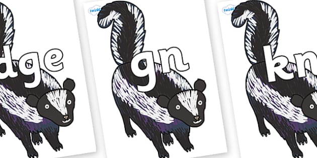 Silent Letters on Skunk to Support Teaching on The Bad Tempered Ladybird - Silent Letters, silent letter, letter blend, consonant, consonants, digraph, trigraph, A-Z letters, literacy, alphabet, letters, alternative sounds