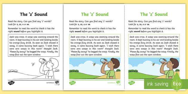 Northern Ireland Linguistic Phonics Stage 5 and 6 Phase 3a, 'z' Sound Activity Sheet - Linguistic Phonics, Stage 5, Stage 6, Phase 3a, Northern Ireland, Worksheet, 'z' sound, sound se