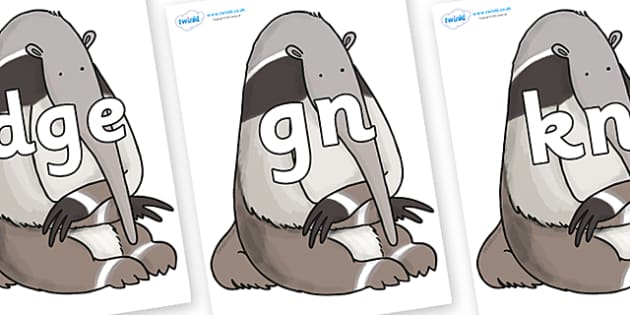 Silent Letters on Anteater to Support Teaching on The Great Pet Sale - Silent Letters, silent letter, letter blend, consonant, consonants, digraph, trigraph, A-Z letters, literacy, alphabet, letters, alternative sounds