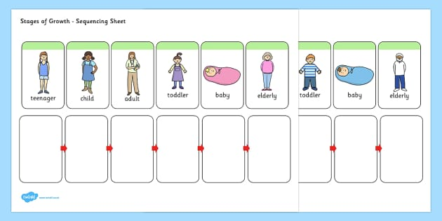 Stages of Growth Sequencing Activity - sequencing, sheet, growth