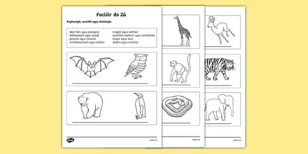 An Zú, Roghnaigh agus Scríobh Activity Sheet, worksheet