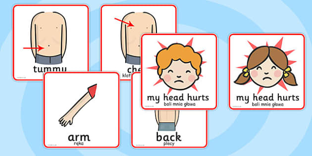 Parts of the Body Communication Cards Polish Translation - polish