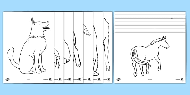 Farm Animal Colouring Sheets (Black & White, A4) - farm animals, animals, farm, colouring, fine motor skills, poster, worksheet, vines, A4, display, black and white, B & W, cow, dog, cat, pig, chicken, sheep