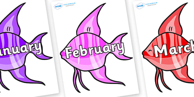 Months of the Year on Angelfish - Months of the Year, Months poster, Months display, display, poster, frieze, Months, month, January, February, March, April, May, June, July, August, September