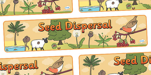 Seed Dispersal Display Banner - seed dispersal display banner, seed, dispersal, seeds, display, banner, sign, poster, disperse, agriculture