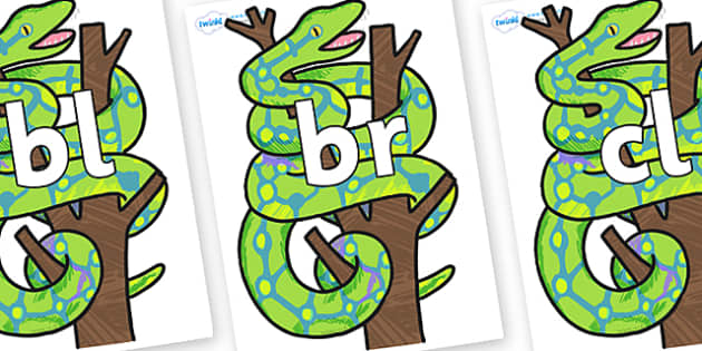 Initial Letter Blends on Boa Constrictor to Support Teaching on The Bad Tempered Ladybird - Initial Letters, initial letter, letter blend, letter blends, consonant, consonants, digraph, trigraph, literacy, alphabet, letters, foundation stage literacy