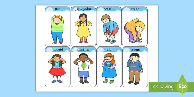 Heads, Shoulders, Knees and Toes Flashcards Welsh - Welsh Language Pattern Themed Resources, Parts of the Body, Welsh, Songs, Rhymes, Welsh Songs.,Welsh